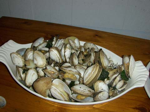 a-clams.jpg
