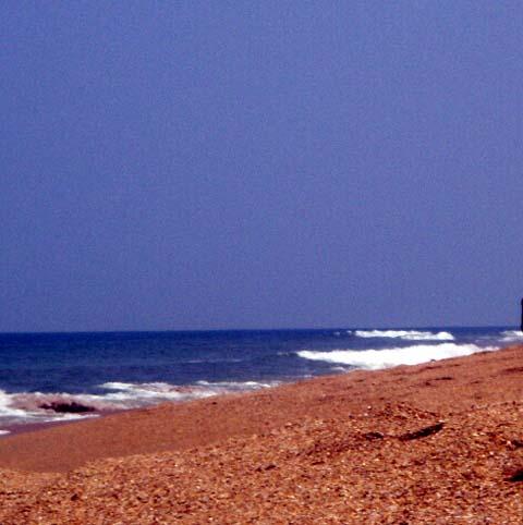 a-canaveral-seashore.jpg