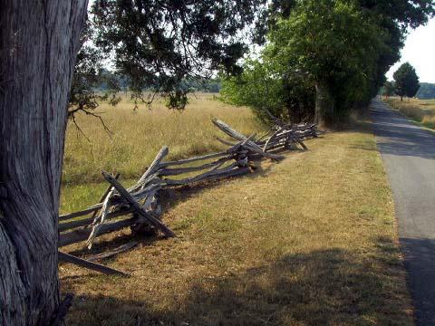 a-manasas-fence.jpg