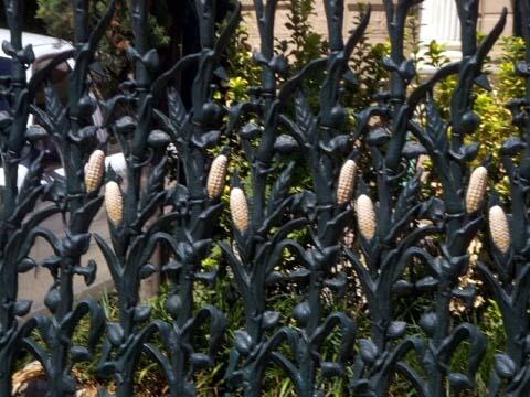 f-corn-fence.jpg
