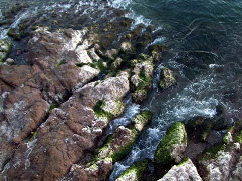 a-shoreline.jpg