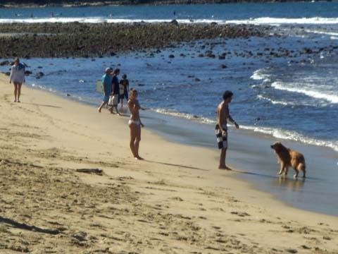 a-beach-south.jpg