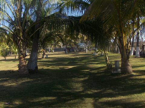 a-los-cocos-rv-park.jpg