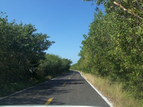 a-road1.jpg