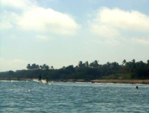 a-surfer1.jpg
