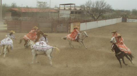 a-cowgirl-3.jpg