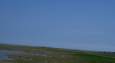 aa-coastal-1.jpg