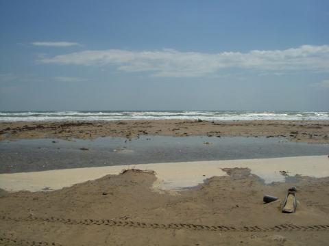 a-wet-beach.jpg