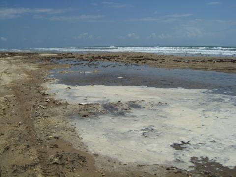 a-wet-beach2.jpg