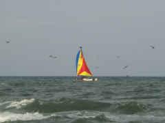 w-boat1-240.jpg