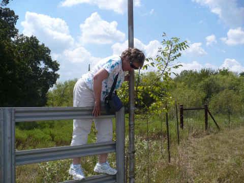 z-climbing-fence-jenelle.jpg