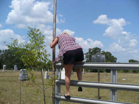 z-climbing-fence.jpg