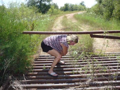 z-crawling-under-a-fence.jpg