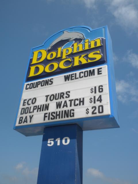a-dolphin-docks.jpg
